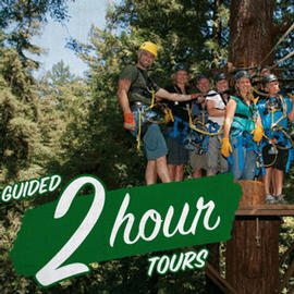 Redwood Canopy Tours