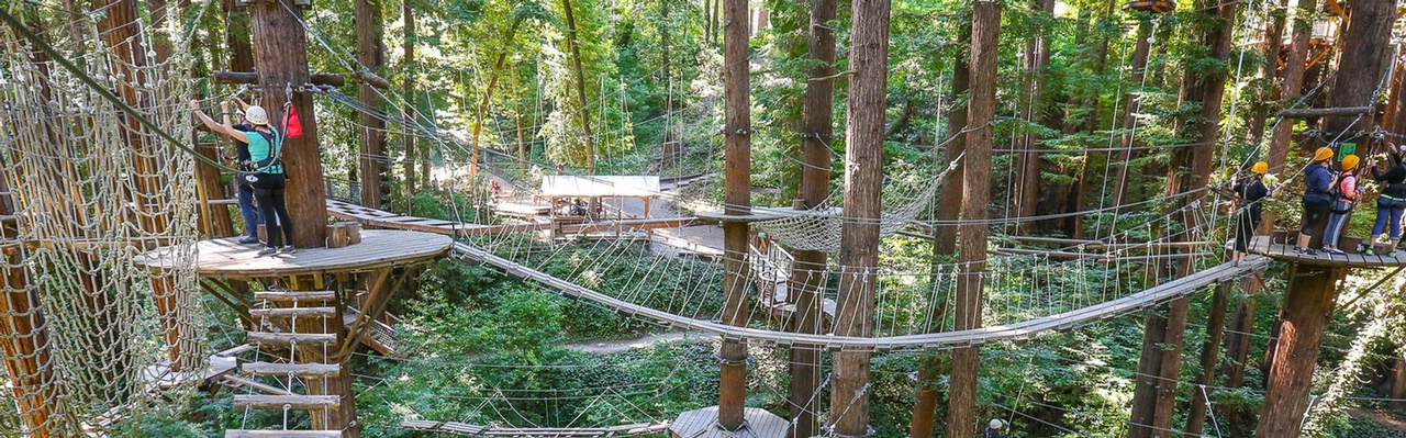 Mount Hermon Zipline Adventures