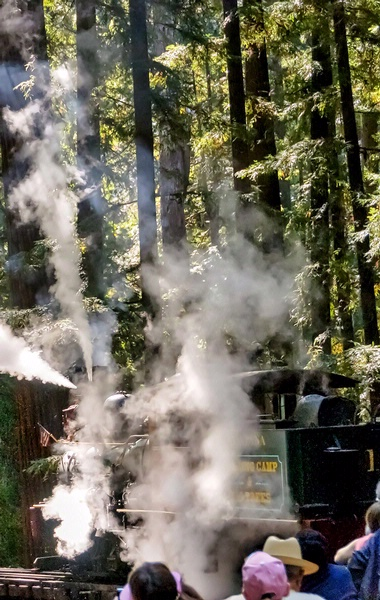 Roaring Camp Railroads/Henry Cowell State Park