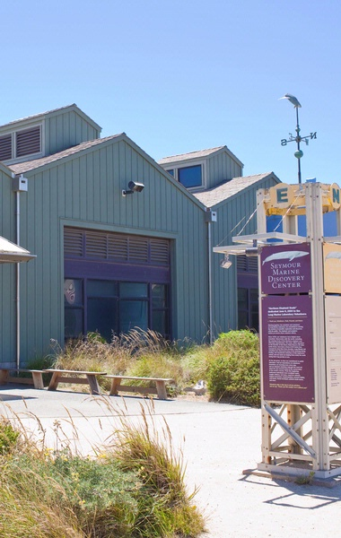 Seymour Marine Discovery Center at Long Marine Lab